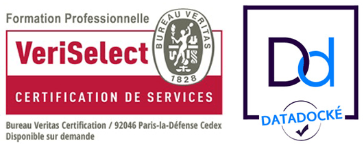 logos de certification datalock et veritas